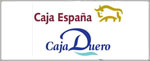 Oficina 4126 CAJA-ESPANA-INVERSIONES MADRID